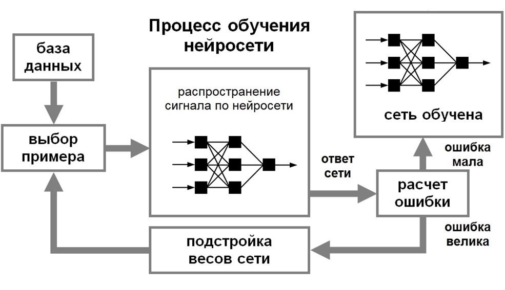 процесс обучения нейросети