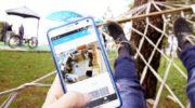 Подключение видеонаблюдения к интернету своими руками