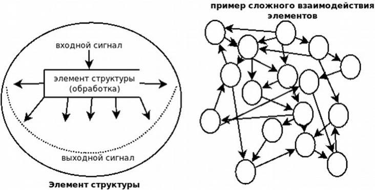 Взаимодействие элементов в кибернетике
