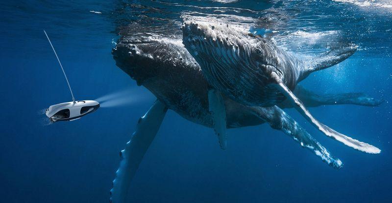 Подводный беспилотник для съемки